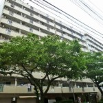 第5桜台ファミリーマンション 西館509号室