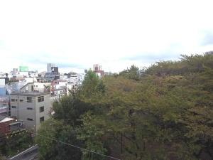 【眺望】バルコニーから駒込東公園の緑が一望できます♪