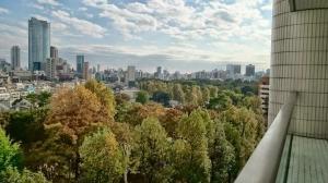 【眺望】青山公園をの森、東京タワーとミッドタウンを臨みます♪