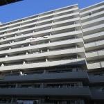 板橋ハイタウン 904号室