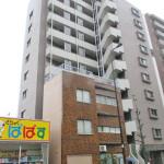 日神デュオステージ王子神谷 10階