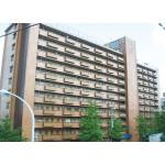 高井戸永谷マンション 903号室