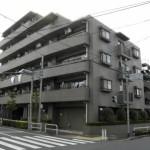 コスモ成増エクセラ 406号室