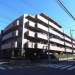 コスモ成増グランヒル 203号室