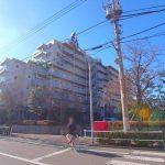 パルシティ徳丸 1階