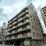 ドルミ錦糸町・大興ビル 812号室