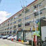ライオンズマンション三宿 104号室