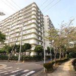 南篠崎スカイハイツ B棟9階