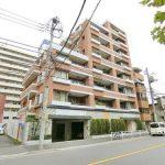 サンクタス錦糸町クレフ 503号室