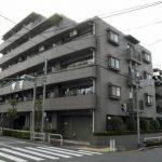 コスモ成増エクセラ 504号室