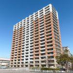 ブリリア大島小松川公園 11階