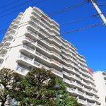 シーアイマンション駒場 13階