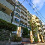 コスモ多摩川ラ・ミューゼ 101号室